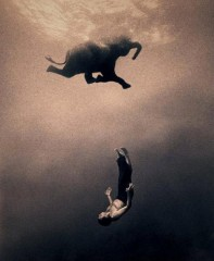 ashes and snow,Gregory Colbert, photo