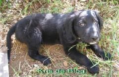 blog helios 381.jpg